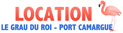 Location au Grau du Roi Port Camargue
